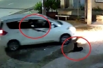 Clip: Cẩu tặc đi ô tô, bắn súng điện trộm chó nhanh như chớp