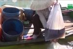 Gặp những phụ nữ nghèo 'mót dầu' trên luồng sông Dinh