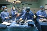 Ghép gan thành công cho hai bệnh nhi bị xơ gan, sự sống chỉ tính bằng ngày