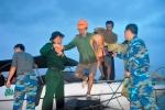 Chủ quan trước lũ dữ, 131 công nhân suýt thiệt mạng ở Hội An