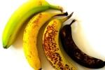 Trong 4 quả chuối dưới đây, quả nào giàu dinh dưỡng và tốt cho sức khỏe nhất?