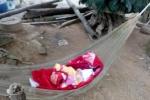 Đỉnh cao của não cá vàng: Mẹ để con ngoài vườn rồi lục tung nhà để tìm con