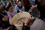 Phóng sinh cá chim trắng xuống sông Hồng: Nhiều cơ quan chức năng vào cuộc