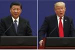 Mỹ - Trung chuẩn bị khôi phục đàm phán thương mại