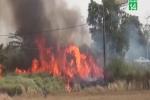 Clip: Hàng trăm người bao vây, đốt bãi lau sậy truy bắt kẻ cướp xe máy ở TP.HCM