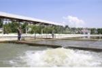 Đà Nẵng chốt phương án xây dựng nhà máy nước 1.200 tỷ đồng