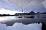 Băng Bắc Cực đang tan chảy nhanh nhất trong 1.500 năm