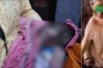 Bị khỉ bắt cóc khi đang ngủ với mẹ, bé sơ sinh chết dưới giếng
