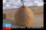 Video: Những thí nghiệm đo độ lạnh kinh hoàng ở Trung Quốc