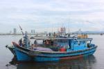 8 ngư dân Đà Nẵng được cứu sống sau 30 giờ trôi dạt trên biển