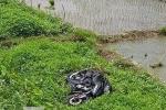 Cố vượt đường ray, 2 thanh niên bị tàu hỏa tông chết