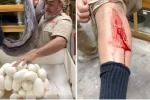 Video: Trăn cái hung dữ cắn nhân viên sở thú, bảo vệ ổ trứng vừa đẻ