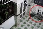 Clip: Tên trộm kỳ quặc cố ăn cắp chiếc yên xe đạp
