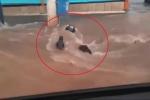 Xoáy nước cuồn cuộn suýt cuốn người đi xe máy xuống hố ga mở nắp