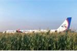 Hỏng động cơ do va phải chim, máy bay Nga hạ cánh cứng giữa đồng