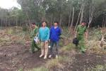 Ngang nhiên chặt phá trái phép hơn 3.000 m2 rừng ở Phú Quốc
