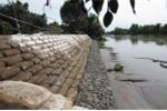 Giải pháp bảo vệ bờ sông bằng công nghệ mềm