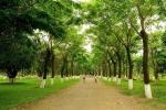 Nho cay xanh, nhiet do tai Ecopark thap hon Ha Noi toi 4 do C hinh anh 9