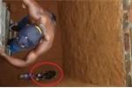Cười vỡ bụng clip chui xuống giếng sâu giải cứu mèo