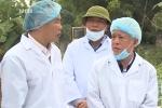 13 tỉnh có dịch tả lợn châu Phi, FAO tới Việt Nam hỗ trợ chống dịch
