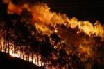 Rừng ở Hà Tĩnh lại ngùn ngụt cháy, dân ôm đồ sơ tán trong đêm