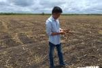 Chủ tịch huyện ở Tây Ninh bác tin người dân quỳ lạy trước nhà mình