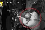 Clip: Tài xế đau tim cứu mạng hành khách trước khi gục đầu xuống vô lăng
