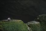 Ảnh, video: Đoàn làm phim Nga sửng sốt trước 'Thế giới bị mất' trong hang Sơn Đoòng