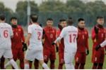 U23 Palestine mang binh hung tuong manh dau U23 Viet Nam hinh anh 1