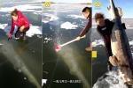 Clip: Dùng rìu bắt cá khủng trên sông băng cực đỉnh