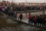 Clip: Du khách nhún nhảy làm sập cầu, nhiều người rơi xuống sông