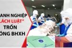 Nhận diện một số thủ đoạn thực hiện hành vi vi phạm pháp luật trong lĩnh vực BHXH