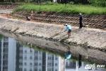 Cận cảnh dòng kênh 'đen ngòm' khiến cá chết hàng loạt ở Đà Nẵng