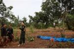 Phó Chủ tịch HĐND xã bị bắn chết trong vườn cà phê: Đã bắt nghi phạm nổ súng