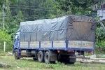 Bắt giữ xe tải vận chuyển hơn 800 khúc gỗ trắc trái phép ở Quảng Nam