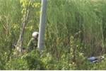 Người đàn ông chết cháy cạnh xe đạp trên bãi cỏ: Xác định danh tính nạn nhân