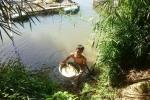 Dân tố thủy điện không xả nước khiến cá nuôi chết hàng loạt