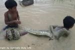 Đi câu cá, 2 bé trai bắt được trăn khổng lồ dưới ruộng
