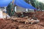 Tìm thấy kho đạn và thuốc nổ lớn trong khu dân cư