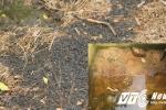 Thông tin mới nhất vụ đổ trộm chất thải Formosa ở Thiên Cầm