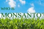 Những điều cần biết về Monsanto – tội đồ của môi trường toàn cầu