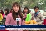 Chợ Tết 0 đồng dành cho người nghèo ở Hà Nội