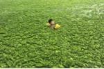 Ô nhiễm nguồn nước kinh khủng ở Trung Quốc