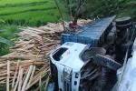 Xe tải chở gỗ lật xuống suối, tài xế thoát chết trong gang tấc