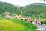 Hàng trăm học sinh thành phố lội ruộng mót lúa, nấu cơm chay cúng Phật