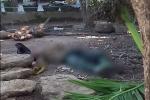 Ngã từ ngọn cau xuống đất, người đàn ông ở Quảng Ngãi thiệt mạng