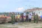 Mật phục bắt 5 xe công nông chở gỗ lậu: Công an triệu tập 7 đối tượng