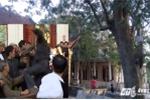 Ly kỳ chuyện cây sưa gần 50 tỷ đồng khiến dân làng 'đổ máu' ở Bắc Ninh