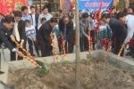 'Diễn' khi trồng cây: Căn bệnh lệch lạc về nhận thức, văn hoá của một bộ phận quan chức