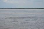 Tắm biển Cần Giờ, 7 học sinh bị nước cuốn mất tích